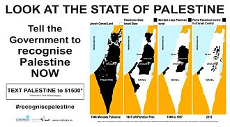 The Irish Government MUST recognise Palestine before it disappears!